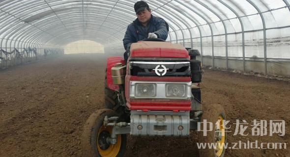 周口沈丘:订单农业增效益助脱贫