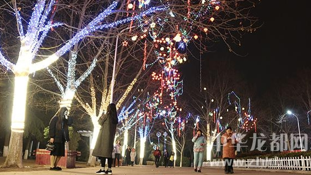 项城市民在灯光景观树下游玩