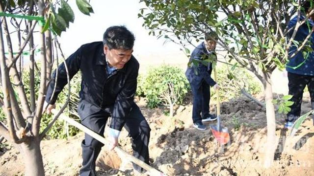 刘继标等市四大班子领导参加义务植树活动