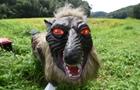 日本农民用能发出多种声音的机器狼赶野猪