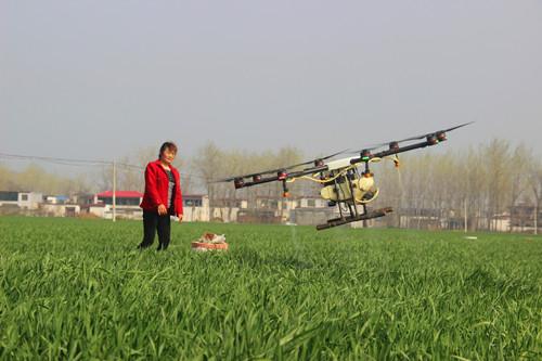 """无人机洒""""药雨"""" 防治小麦病虫害"""