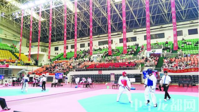 省十三运会跆拳道比赛首日周口夺三金