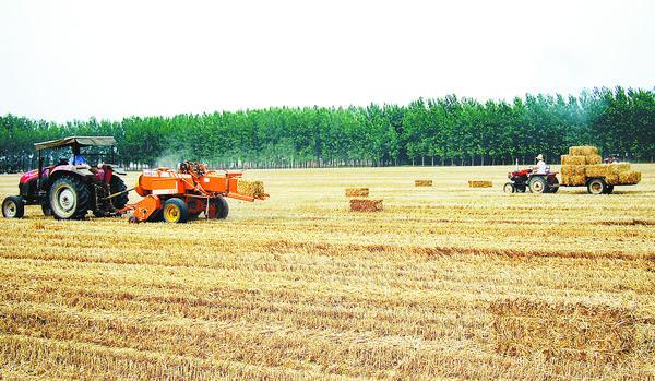 扶沟县促进麦秸再利用