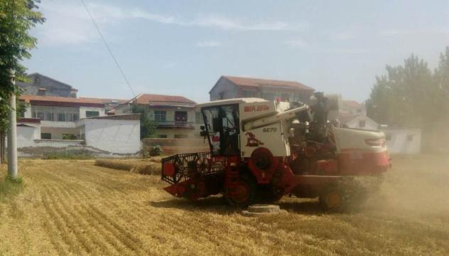 周口麦收近七成 已收割690.2万亩
