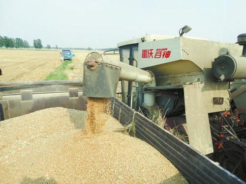 助农售粮受好评
