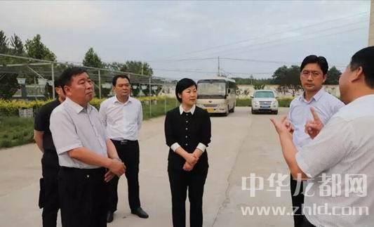 郸城党员干部同人民一起共庆党的生日