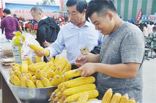 周口市多地喜庆首个中国农民丰收节