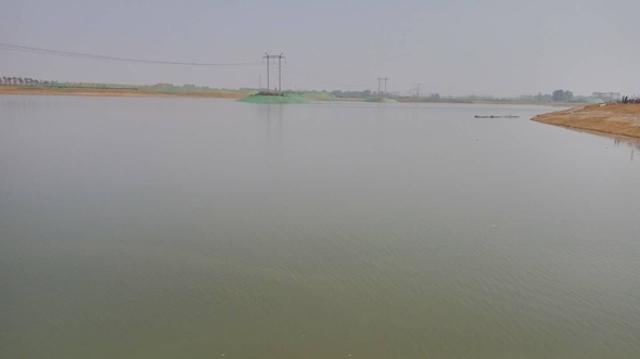 引黄调蓄项目已形成1500亩湖面