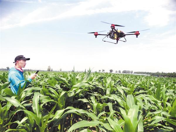 """无人机""""飞防""""助力农业生产"""