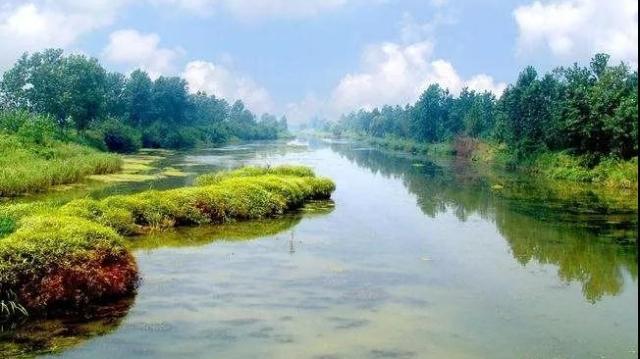 占地17000多亩,周口这座国家湿地公园获批复建设!猜猜周口有几个?