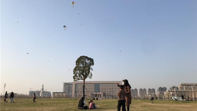放风筝享受春光