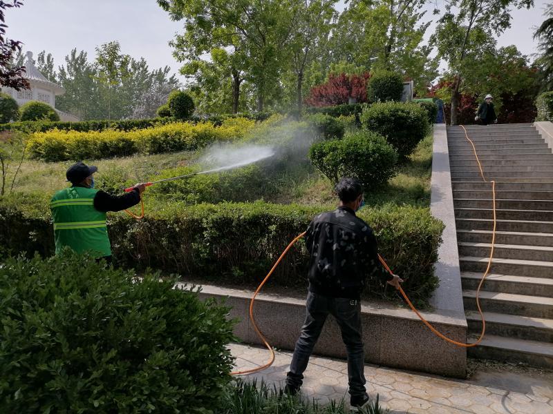 周口市园林管理处:积极开展春季病虫害防治工作