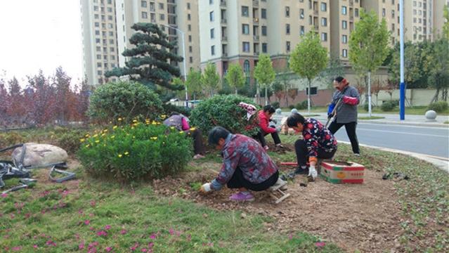 补种花木为城市添绿