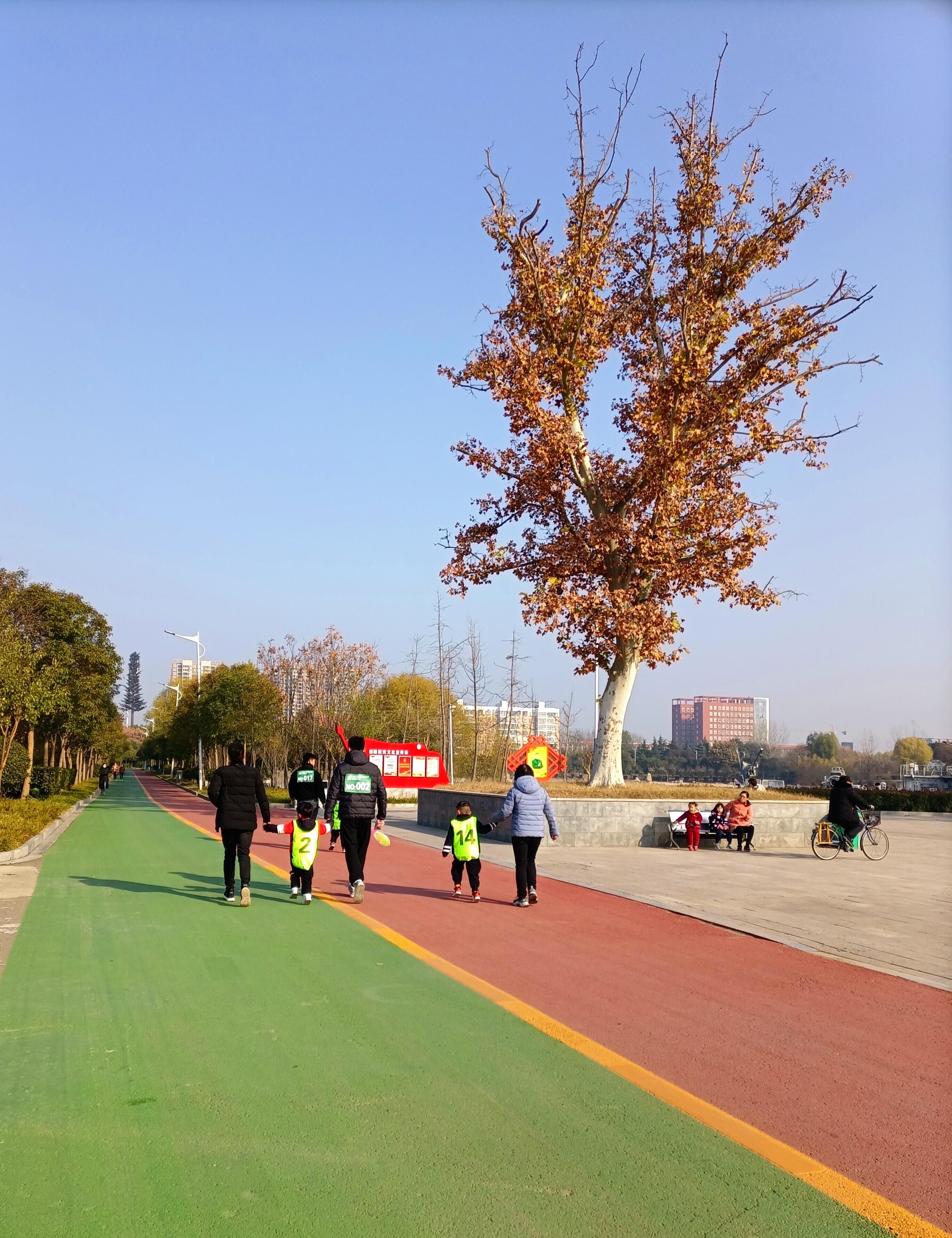 市民在公园享受周末时光