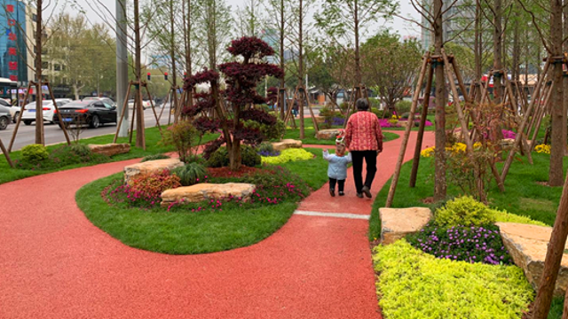 南花园:街头小游园 周口市民后花园