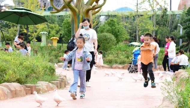 近期周口森林野生动物园恢复开放