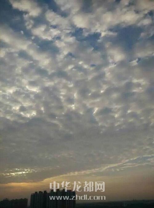 背景 壁纸 风景 气候 气象 天空 桌面 500_675 竖版 竖屏 手机