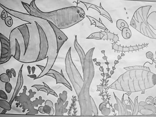 美丽的海底世界[组图三]
