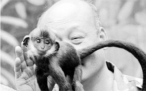 保育员舔猴屁股1小时帮其排便